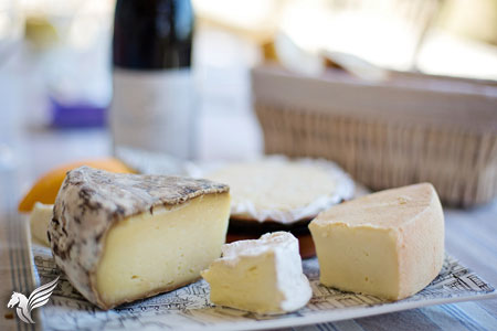 photo_450x300_fromages_01